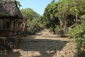 Tenganan-Village-3